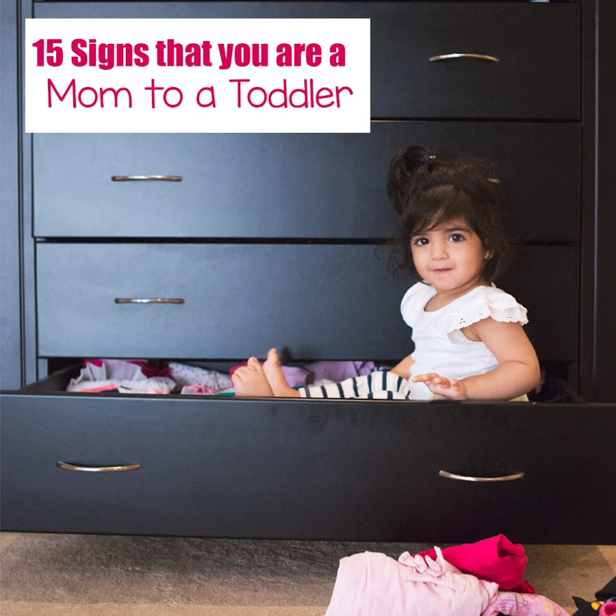 signs you are a toddler mom