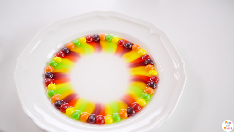 skittles experiment with water