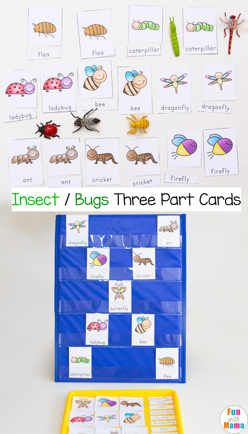 montessori insect 3 part cards fun with mama