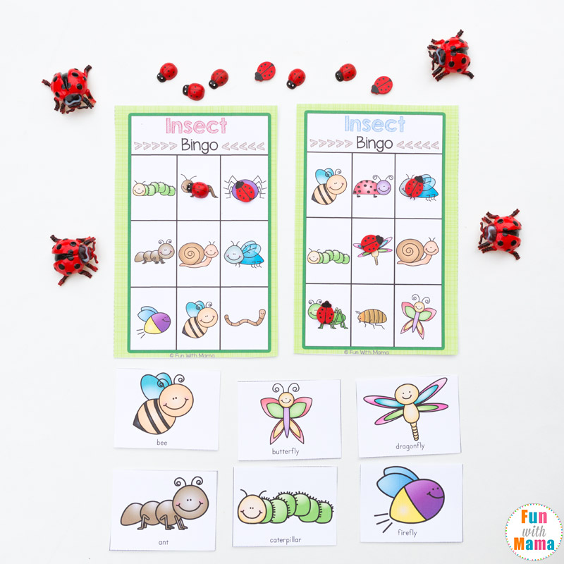 image regarding Spring Bingo Game Printable identify Insect Printable Bingo Video game For Little ones - Enjoyment with Mama