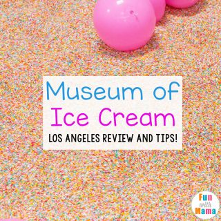 Museum of Ice Cream in Los Angeles Review + Tips
