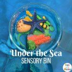Ocean Theme Preschool Sensory Bin