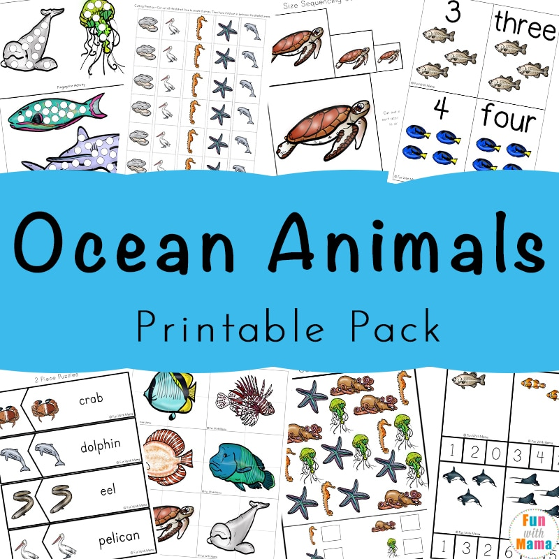 image relating to Animals Printable referred to as A Tremendous Entertaining Ocean Pets Printable Pack For Small children