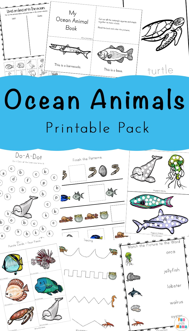 picture relating to Ocean Printable called A Tremendous Enjoyable Ocean Pets Printable Pack For Small children