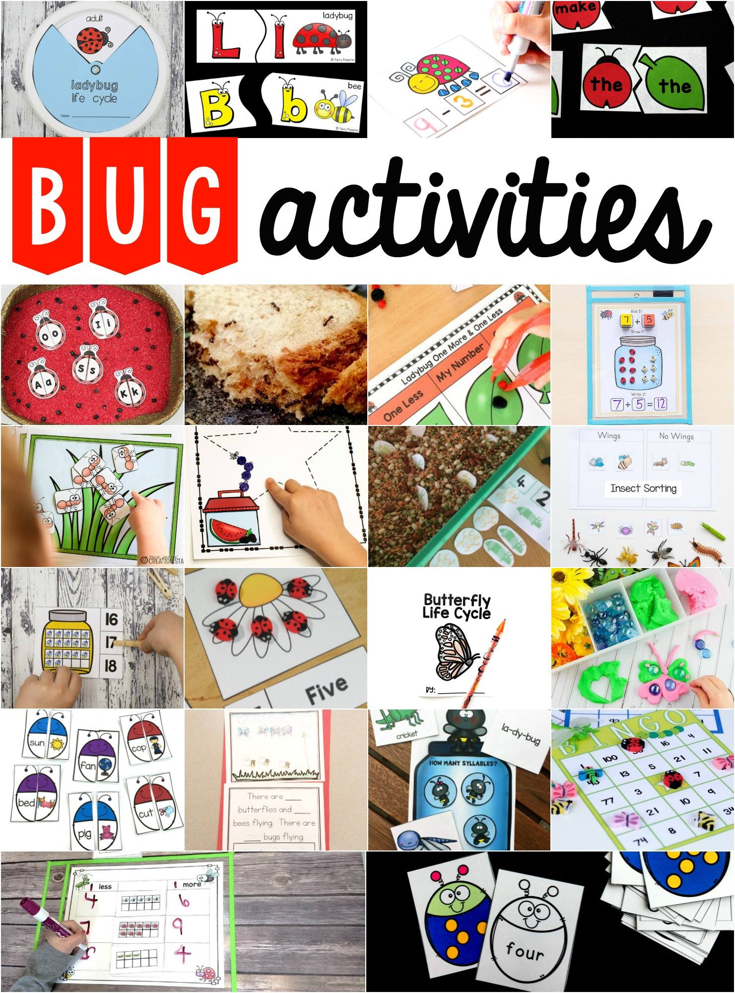Preschool Insect Theme Sorting Worksheet Bug Activities Fun With