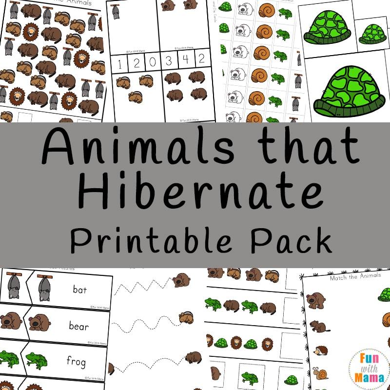 animals that hibernate printable pack fun with mama. Black Bedroom Furniture Sets. Home Design Ideas