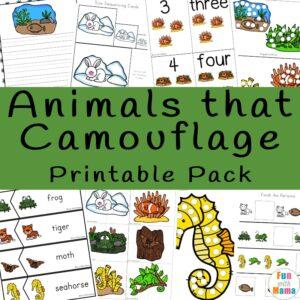 animals that camouflage