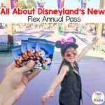 Is Disney Flex Annual Pass Worth it?