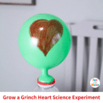 Growing a Grinch Heart Science Experiment